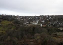 Село Долен